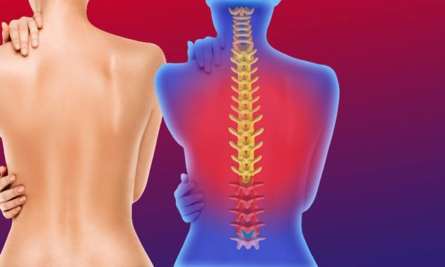 Atelier formation : Troubles Musculo Squelettiques liés à son activité